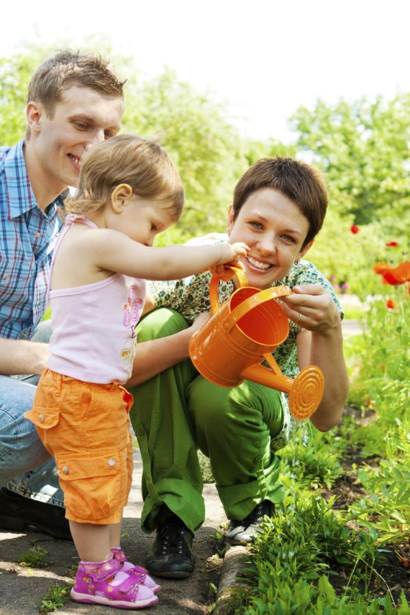 Family watering plants - Medium